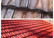 DIY Painting your own roof